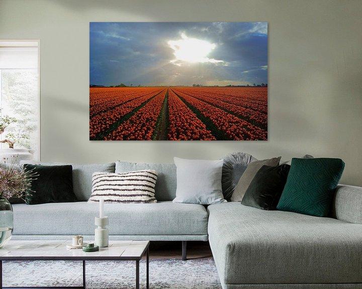Sfeerimpressie: Bollenveld op Goeree-Overflakkee van Michel van Kooten