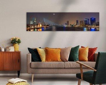 Région de la rivière Panorama à Rotterdam
