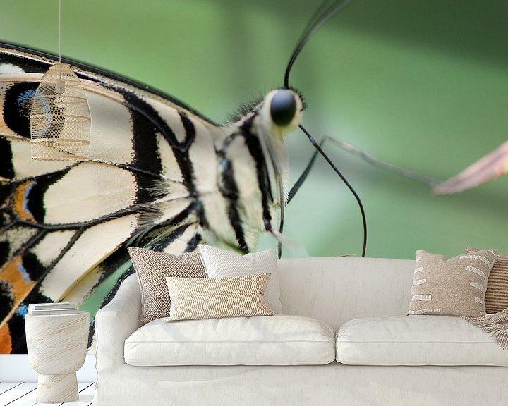 Sfeerimpressie behang: Tropisch vlinderfestival van Chris Heijmans