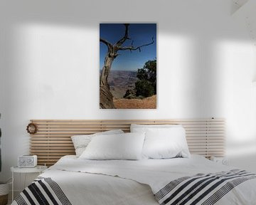 dode boom in grand canyon van Sanne Willemsen