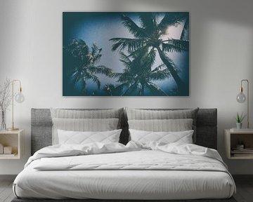 Palmbomen in Miami von Aiji Kley