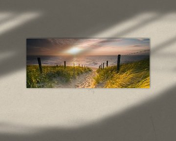 Strandopgang van Nico Zwanenburg