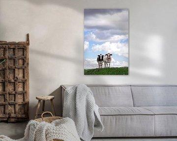 koeien samen op de dijk von Martin Hulsman