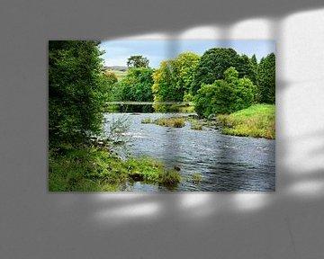 River Wharfe in Yorkshire van Gisela Scheffbuch