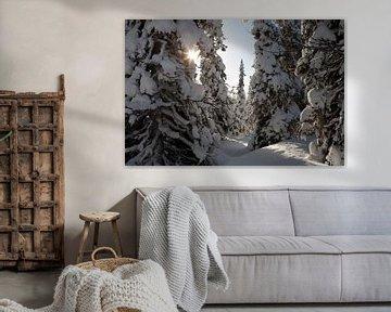 Lapland van Arthur van Iterson