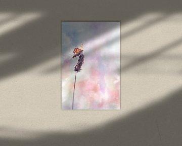 Sky high van Bob Daalder