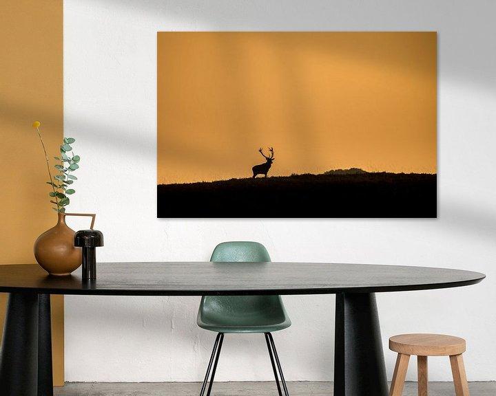 Sfeerimpressie: Edelhert in laatste zonlicht van Erwin Maassen van den Brink