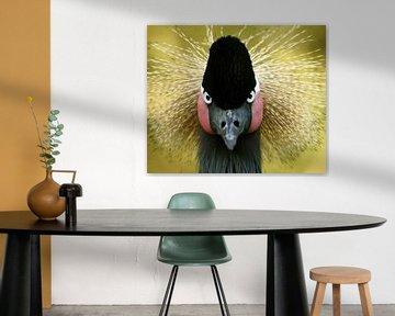 Portret van een kroonkraanvogel von Christel Nouwens- Lambers