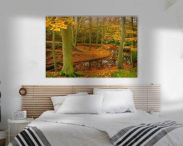 Landgoed Elswout in de herfst van Michel van Kooten