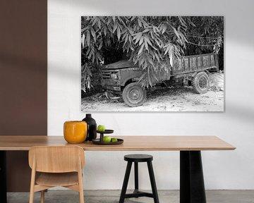 Pickup Truck von Inge Hogenbijl