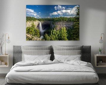 Helmcken Falls van Peter Vruggink