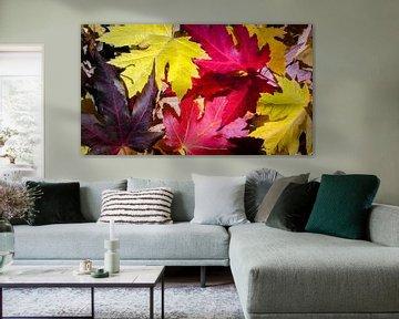 Autumn Leaves von rosstek ®