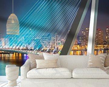 Panorama Rotterdam Erasmusbrug von Anton de Zeeuw