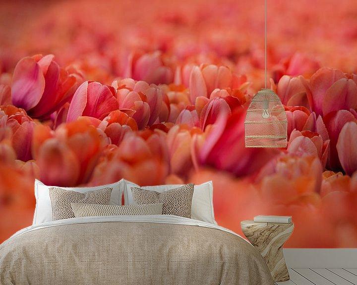 Sfeerimpressie behang: Tulp van Arthur Wolff