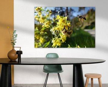 Flying Bee van Johnny van der Leelie