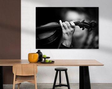 Violin van Rene Kuipers