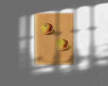 Deux Pommes, Edouard Manet