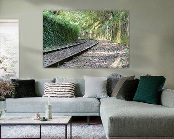 spoorweg naar de toekomst von Compuinfoto .