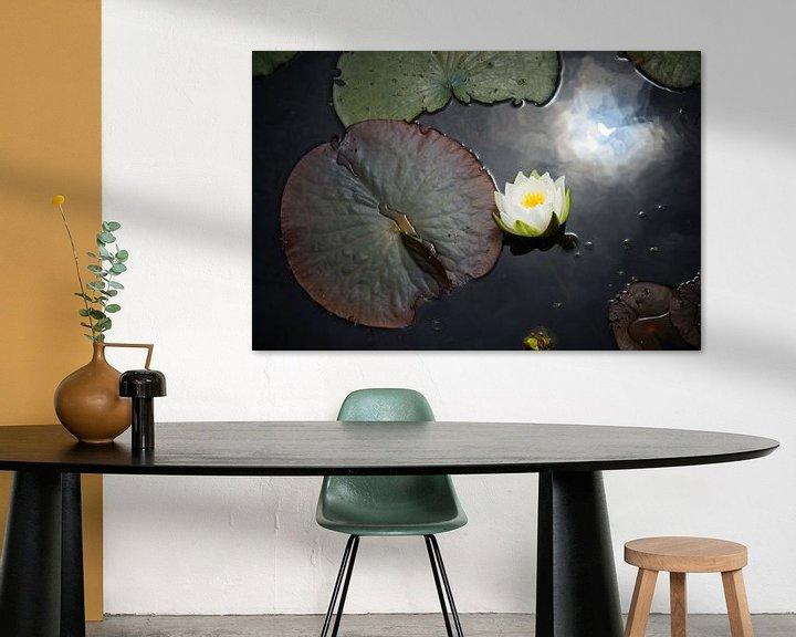 Sfeerimpressie: Waterlelie van Michel van Kooten