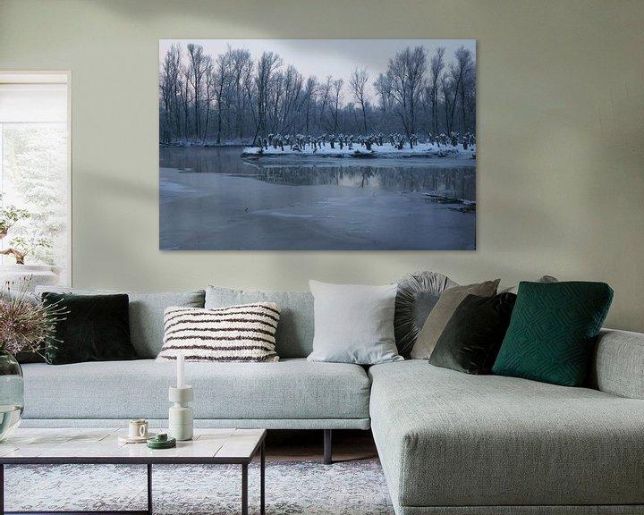 Sfeerimpressie: Biesbosch in de winter van Michel van Kooten