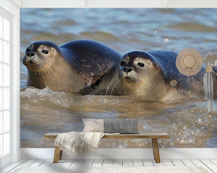 Sfeerimpressie behang: Zeehonden in Zeeland van Mark Bolijn