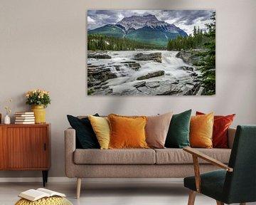 Athabasca Falls van Peter Vruggink