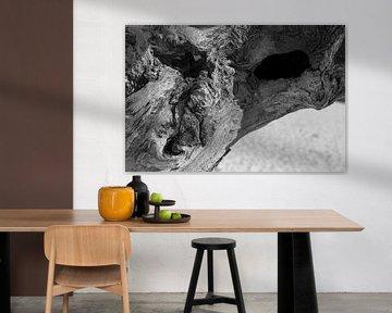 Boze Baum, Halloween, Gesicht in einem toten Baum auf den Loonse und Drunense Dünen, Nordbrabant, di von Ad Huijben