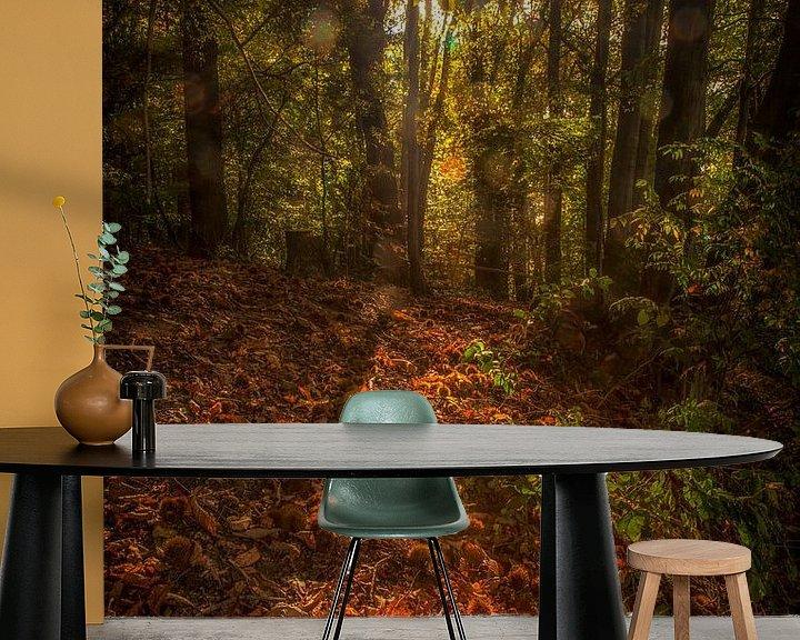 Sfeerimpressie behang: Spelen met licht en herfstkleuren van John Kreukniet