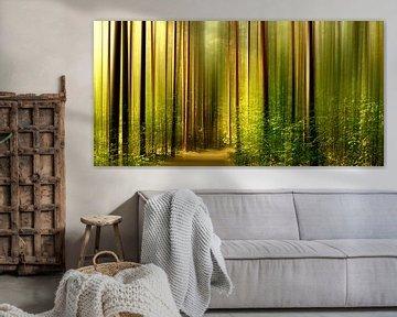 In het bos van Violetta Honkisz