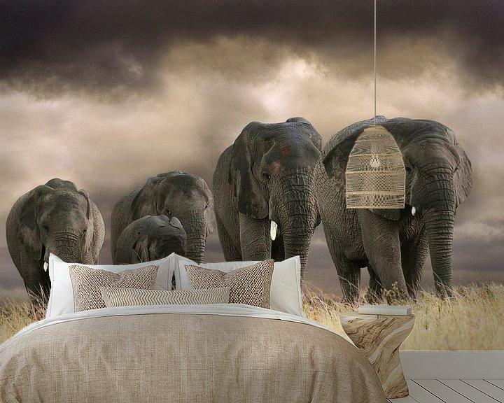 Sfeerimpressie behang: Olifanten op rij van Marcel van Balken
