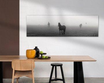 Paarden op een weiland, in de mist. von Menno van der Werf