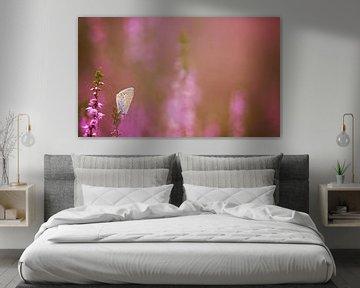 Colors of Summer van Monique Laats-Wind