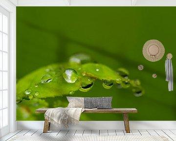 Wet leaf van Ursula Di Chito