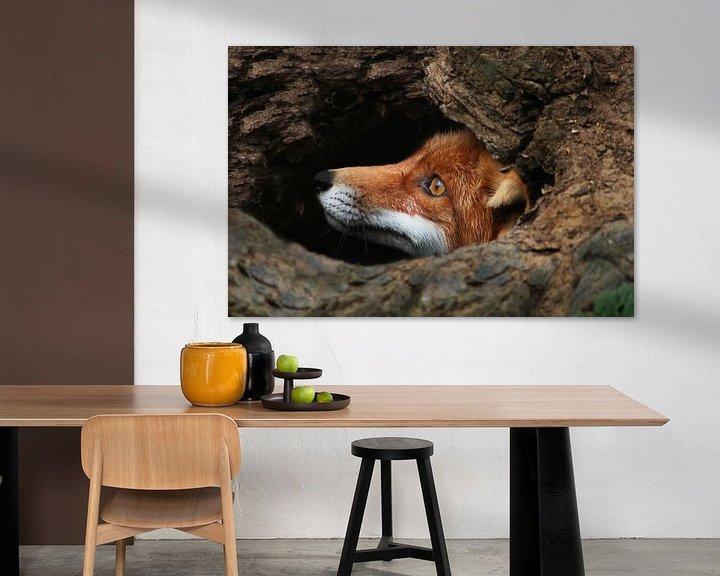 Beispiel: Red fox  von Renate Peppenster
