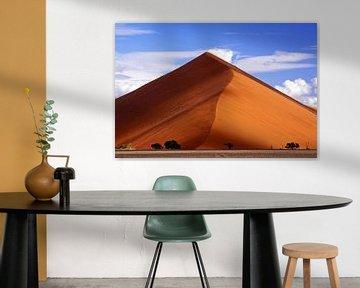 The dune - Namibia van W. Woyke