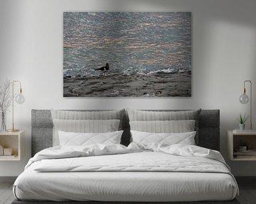 Austernfischer am Meer sur Annette Gasch