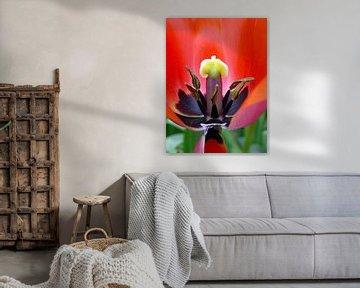 The earth laughs in flowers von Corina de Kiviet