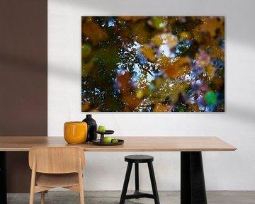 Herfst reflectie van PvdH Fotografie