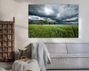 Dunkle Gewitterwolken über der Wiese von Sjoerd van der Wal