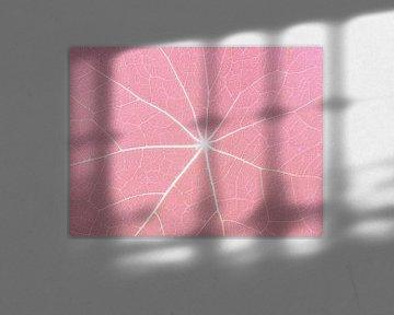 Pretty in Pink (Bladnerven in Pastelroze) van Caroline Lichthart