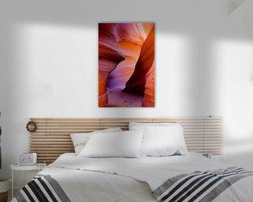 The Canyon van Denise Rubino
