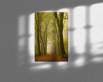 Pfad in einem dunstigen Wald mit Buchebäumen auf beiden Seiten von Sjoerd van der Wal