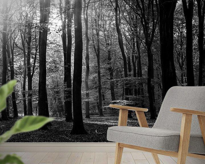 Sfeerimpressie behang: zonnig Speulderbos van Roland Smanski