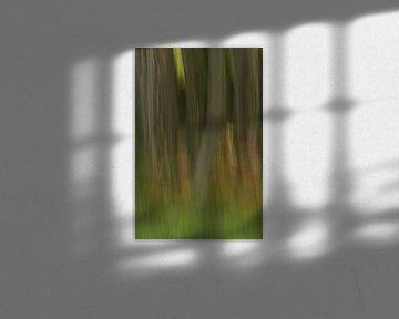 abstractie in beuk van Francois Debets