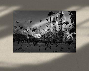 Notre Dame de Paris van Jasper van de Gein Photography