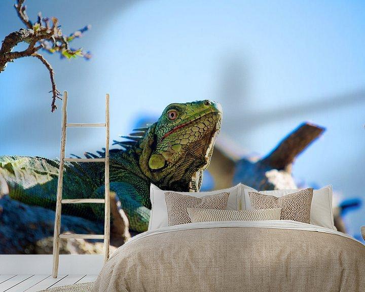 Sfeerimpressie behang: Majestueuze Groene Leguaan op Bonaire van Guy Florack