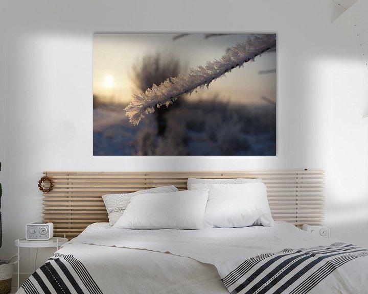 Sfeerimpressie: Winter in de Hollandse Biesbosch van Michel van Kooten