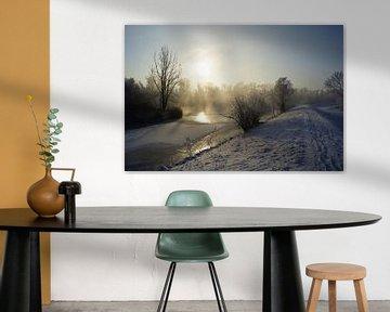 Hollandse Biesbosch in de winter von Michel van Kooten
