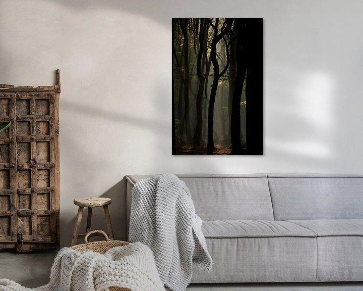 Impression: Mystic forest sur Hans Koster