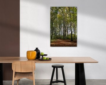 Herbstspaziergang van Gabi Siebenhühner